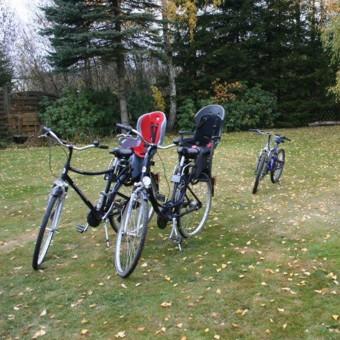 Wypożyczalnia rowerów i sprzętu pływającego.